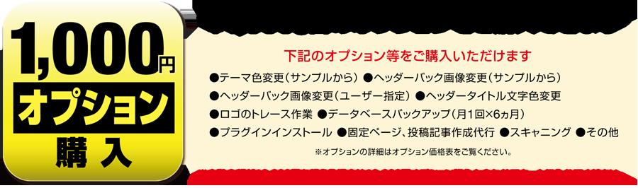 ¥1,000台のオプションを購入できます。